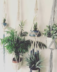 My first double plant hanger - Macrame Adventure