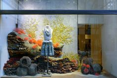 Earth Day Windows 2012 • #Anthropologie