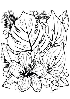 Flower Coloring Sheets, Colouring Sheets For Adults, Printable Flower Coloring Pages, Coloring Pages Of Flowers, Coloring Pages Nature, Printable Coloring Sheets, Spring Coloring Pages, Cute Coloring Pages, Coloring Pages To Print
