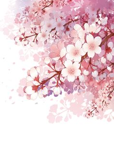 Blossom is very nice🌸 Watercolor Flowers, Watercolor Art, Pink Drawing, Drawing Flowers, Art Japonais, China Art, Anime Scenery, Flower Wallpaper, Cherry Blossom Wallpaper