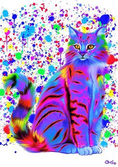 Colorful Painted Tiger Cat by Nick Gustafson