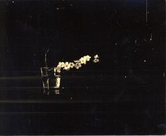 "harvestttman: "" by Masao Yamamoto """