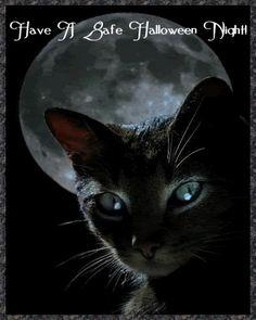 halloweenplaatje