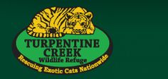 If you're ever in Eureka Springs, Arkansas, check this out!  Lions, tigers, and bears, oh my!