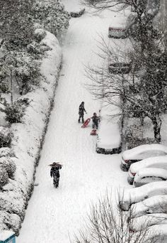 눈썰매 타러 가요 :  28일 울산에 대설주의보가 내린 가운데 남구 옥동의 한 아파트 정원에서 아이들이 눈썰매를 끌고 높은 지대로 올라가고 있다.