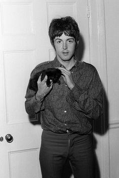Paul.... that kitten is so freaking adorable