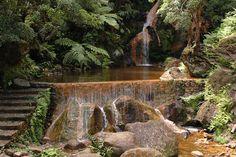 Caldeira Velha Water Fall, Sao  Miguel