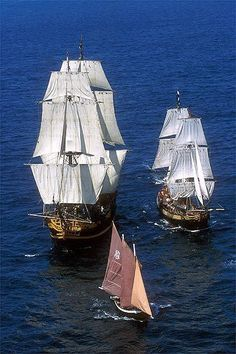Most probably, the Hemione and  the first born duplicate ,The Recouvrance for their first trip toghether out of the port of Brest.