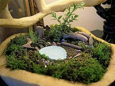 Mini Gartenteich