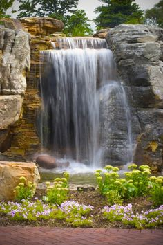 This site is the headquarters of Aquascape, Inc. It has several different water features beginning with Aquascape Signature featrure it is an 190' x 75', 400,000 gallons pond with 10' falls that can be admired from behind in our grotto.