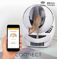 So you are tired of cleaning your cat's litter box every day? The Litter-Robot III Open-Air has you covered. It is an automatic self-cleaning litter box Cat Care Tips, Pet Care, Automatic Litter Box, Best Litter Box, Litter Robot, Self Cleaning Litter Box, Clumping Cat Litter, Cat Toilet, Cats With Big Eyes
