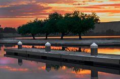 Ming Lake - Bakersfield California