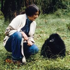 dian fossey occupational therapist