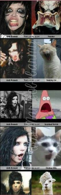 Many faces of Andy.  This is hilarious!  xD
