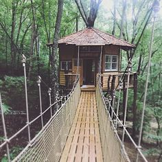 We visited some awesome treehouse rentals in the mountains this weekend. Who doesn't want to sleep in the trees? In The Tree, Adventure Is Out There, Treehouse, Gazebo, Trees, Outdoor Structures, Mountains, House Styles, Awesome