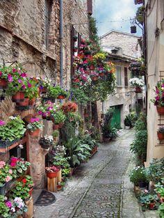 Spello in Italië
