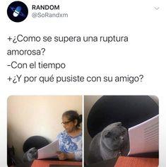 Blackpink Memes, Jokes, Hispanics Be Like, Funny Spanish Memes, Comedy Central, Funny Images, Hilarious, Sad Girl, Happy Things