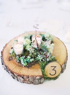 A rustic wedding centerpiece with moss, woodsy table number and succulents.