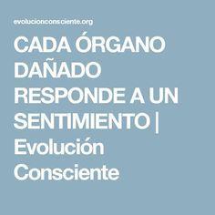 CADA ÓRGANO DAÑADO RESPONDE A UN SENTIMIENTO | Evolución Consciente