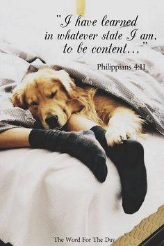 Phil. 4:11