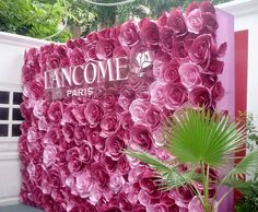 pink paper flowers backdrop