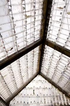 Interior view of the roof of a greenhouse made from recycled plastic bottles and timber