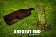 Absolut end
