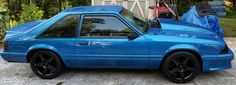 1990 Mustang LX 5.0 Hatchback 93 Mustang, Blue Mustang, Fox Body Mustang, Mustang Cars, Coyotes, Foxes, Pony, Ideas, Sports