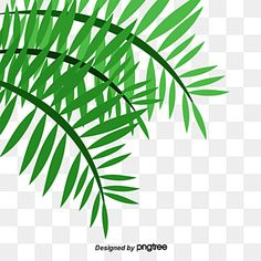 Palm Background, Beast Logo, Tropical Frames, Green Backgrounds, Clipart Images, Prints For Sale, Original Artwork, Plant Leaves, Clip Art