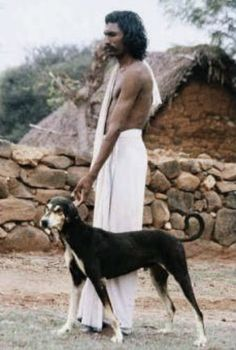 man with his chippiparai hound in India