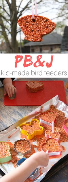 A veterinarian-approved recipe for making cute cookie cutter bird feeders with the kids - in a fun kid-inspired flavor, too! These kid-made bird feeders are a great project for mixed age groups