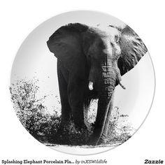Shop Splashing Elephant Porcelain Plate created by inXSWildlife. African Safari, Wildlife Photography, Elephant, Porcelain, Plates, Dining, Unique, Nature, Kitchen