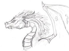 Dragon Head -Sketch by ~CanisLupes on deviantART