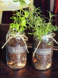 Herb Garden in Mason Jars:  using a previous pin for decorating the jar, I thought, what a wonderful gift a kid can give family or teachers.  First decorate the jar, then plant herbs.  This is something that is very cheap and very thoughtful.  I think kids will LOVE to put all the time and effort into this for their loved ones.   craft-ideas