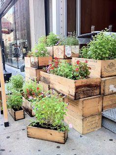 Wine crate planters  Please visit: www.thewonderfulwoodcompany.com, TWWCUK@gmail.com | Global Shipping