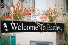 Earthy restaurant - Edinburgh