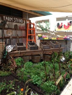 The final installation of our Master Gardener Fair display for the Sonoma County Fair Come by to see us July 25 through August Spring Fair, Growing Gardens, Lawn Maintenance, Sustainable Practices, Tree Care, Organic Gardening Tips, Garden Show, Fair Projects, County Fair
