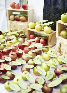 Fresh picked apples are one of the most delicious parts of fall. From escort cards to wedding favors, you can't go wrong! #fallweddingideas