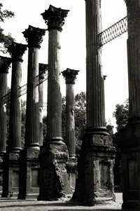 Windsor Ruins near Port Gibson, MS- completely fascinating