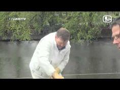 LuckyTV; Max en Koning Willy op de kinderboerderij 04 4 2014 De Wereld Draait Door DWDD - YouTube