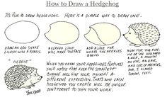 How to draw a Hedgehog from Jan Brett's website