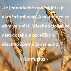 Konfucius a jeho 73 hlubokých citátů o životě, lásce a štěstí Wisdom, Words, Memes, Quotes, Life, Quotations, Meme, Quote, Shut Up Quotes