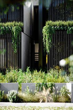 A concept of twin homes, designed by Arkhaus studio in Australia.  By combining wood, simplicity & landscape, the result is a modern and environmentally friendly design. Duplex Design, Townhouse Designs, 3d Architectural Rendering, 3d Rendering, Townhouse Garden, Modern House Facades, Luxury Landscaping, Interior Minimalista, Home Garden Design