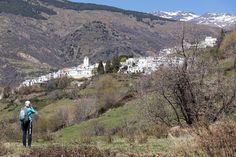 Er worden door de enthousiaste deelnemers aan deze SNP Fotoreis weer heel wat beelden gemaakt. #willemlaros.nl #flickr #photography #travelphotography #traveller #canon #snpnatuurreizen #canon_photos #fotoreis #travelblog #reizen #reisjournalist #travelwriter#fotoworkshop #reisfotografie #landschapsfotografie #follow #alpujarras #capileira #granada #spanje #fb