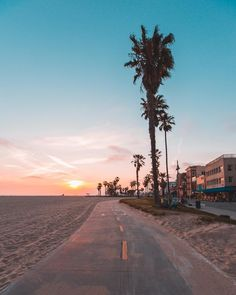 Everyday in la is beach day, los angeles, california. The Beach, Beach Day, Usa Tumblr, California Dreamin', California Palm Trees, Venice Beach California, Photos Voyages, Aesthetic Pictures, Aesthetic Wallpapers