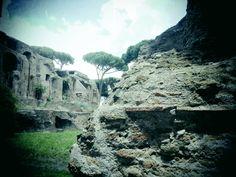 El Monte Palatino de Roma