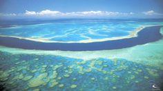 Un Drone Marino Salverà La Grande Barriera Corallina