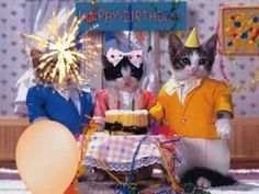 """""""Happy Birthday to You!"""" Especially for Cat Lovers - YouTube"""