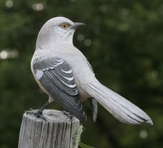 Mockingbird bird carving