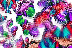 Digital print by Melanie Abernethy